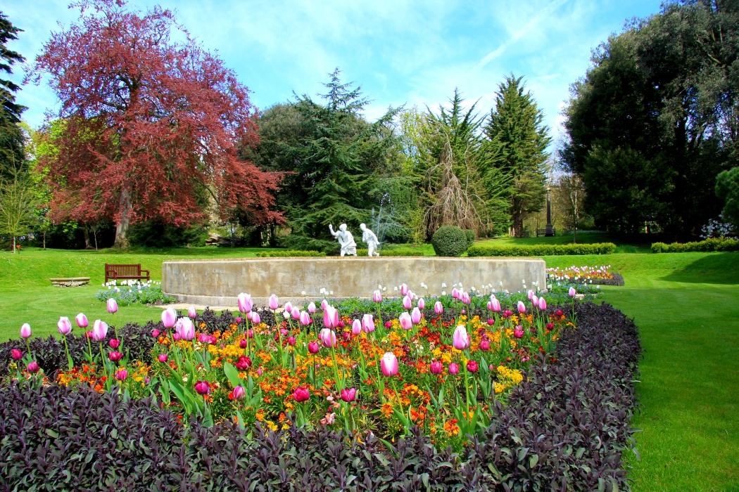 garden flower bed at front.jpg