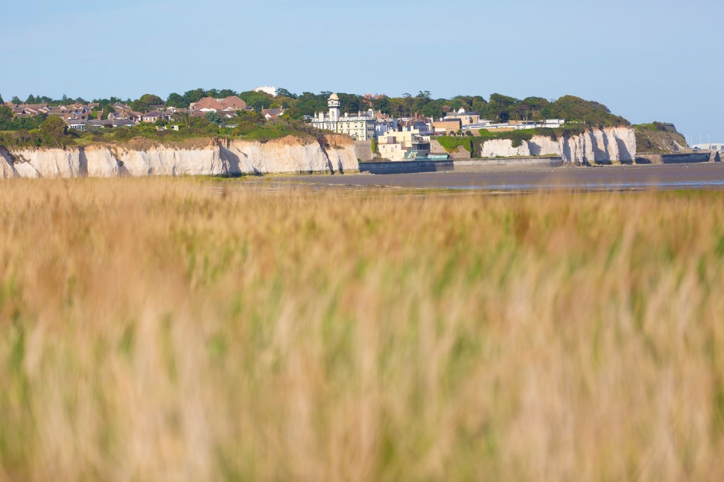 Birdwatching at Pegwell Bay